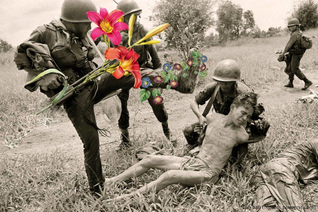 hoa nơi chiến trường