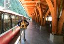 Toàn cảnh núi Alishan ở Đài Loan – ngất ngây vẻ đẹp núi rừng