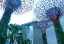 Khám phá toàn cảnh Gardens by the Bay ở Singapore