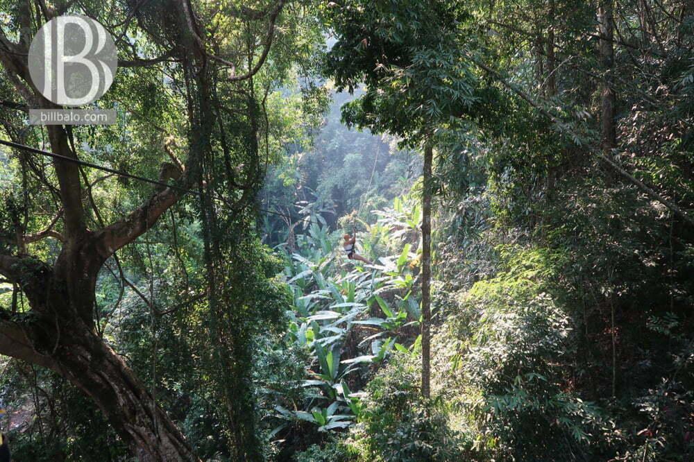 Đu dây xuyên rừng ở Chiang Mai - Flight of the Gibbon Chiang Mai