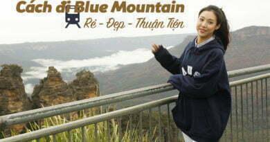 Cách đi Blue Mountain bằng Train ở Sydney, Úc rẻ nhất và tiện nhất