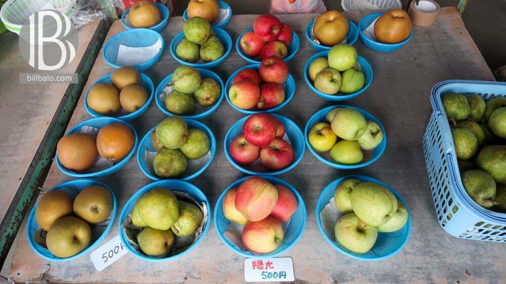 Mùa trái cây ở Nhật và những vườn trái cây ở Nhật được yêu thích