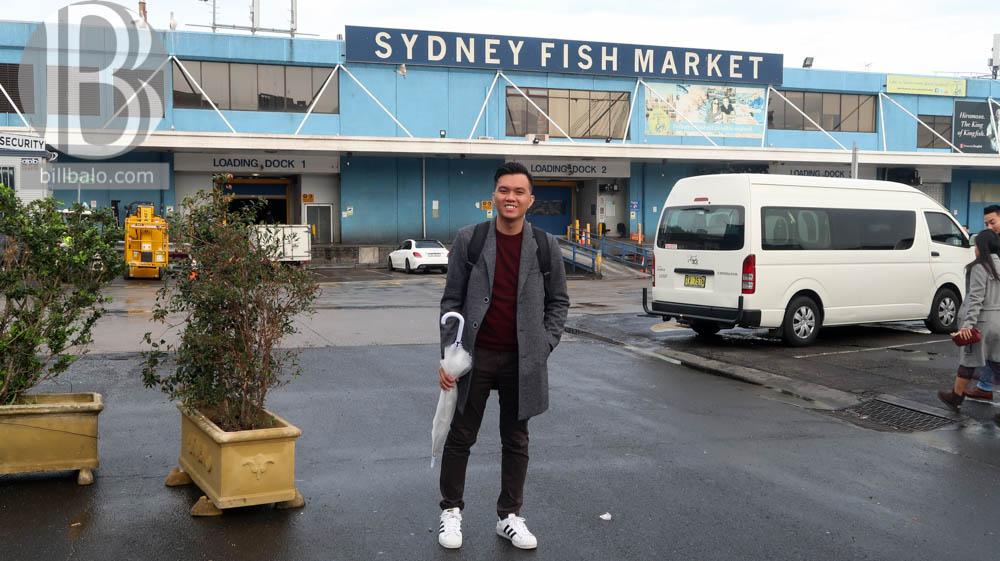 Thời gian phù hợp nhất để tới Chợ cá Sydney